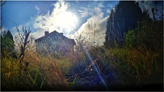 low sun above the house / across the field / from the edge of the path (raymondmassey) Tags: lowsun grass brightfoliage saturatedcolour