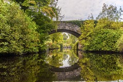 A stone bridge in Leitrim (mark-84) Tags: autumn europe nikon reflection herbst reflexion gold yellow green colors thomas photography mega pixels pixel outdoor plant tree serene foliage river water landscape building architecture additional info viewing privacy public safety level safe flag photo ireland leitrim bridge fishing october nature trees