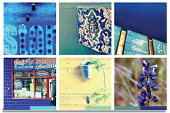 Indigo: Pattern blast (Jayeeta..) Tags: life flowers art colors tile spring purple graphic teal sunday indigo cities bloom walls punch stories storyboard soulful bold colorboard 2013 jayeetaphotography whatilovedthisweek