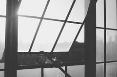 Untitled (isabearrr) Tags: winter blackandwhite window minnesota industrial fuji bokeh grain minneapolis grainy vsco vscofilm