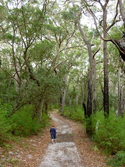 Booderee National Park (Christopher West) Tags: boodereenationalpark
