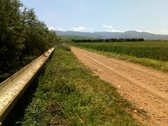 Milli Triffa   (Jamal Elkhalladi) Tags: nature maroc agriculture milli  hassi   berkane   triffa     morocco