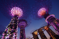 Gardens by the Bay (ACC88) Tags: sky singapore asia pentax bluehour marinabay gardensbythebay marinabaysands supertree