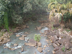 Rainforest creek (Cole Vassiliou) Tags: park holiday water creek river garden botanical hawaii rainforest cole australian national fantasy riverbed scifi writer author vassiliou colevassiliou