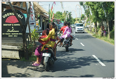 Galungan - Transport balinais (Michal Magnin) Tags: bali transport scooter moto fte sarong bambou kuningan ubud dieux offrandes indonsie galungan penjor offrande balinaise