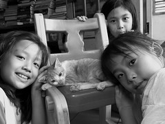 The little girls and kitten (-clicking-) Tags: girls friends blackandwhite bw monochrome animal cat children blackwhite kitten mood child friendship emotion innocent streetphotography kitty streetlife vietnam innocence lovely nocolors vietnamesechildren