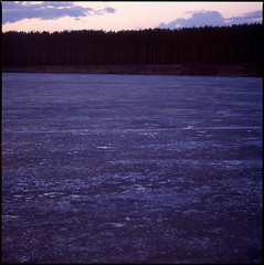 Melting the ice (t a r j a) Tags: morning light mist color 120 6x6 film ice colors grass fairytale forest square sadness grey spring twilight loneliness fuji dry slide hasselblad velvia fujifilm sight provia tale freshness 120mm carlzeiss hasselblad503cx carlzeiss120mmf4cf northernpaths