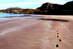 set the path (billy dog daws) Tags: beach water scotland highlands north steps shining pathway