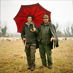 "Italians (giancarlo rado) Tags: hasselblad italians sheperd caterinadeboni ""jpeggy""platinumphoto winner500 soe italy nordest italianpeople carlzeiss italia italianphotography picturesofitalians fivestarsgallery portrait ritratto 6x6 photosofitalians northitalians analog northernitalians planar8028 colorphotoaward sekonicl208twinmate peopleatwork italianpeopleinitaly fotografiediitaliani ritrattiitaliani mywinners photosofnorthernitalians lavoro square northernitalianpeoplephotos picturespeopleitaly mostra photosofitalianpeople explore coppia donna"