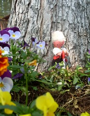Little Hunter (Georgie_grrl) Tags: flowers toronto ontario garden doll downtown knife hunter kensingtonmarket mydarkpinkside samsungd760 cutebutodd