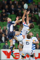 Jason-Woodward-Ebden-Etzebeth (www.lucaswroe.com) Tags: park sports rugby stadium union australia melbourne super victoria mens aus sporting direct dhl rebels rabo stormers aami 2013