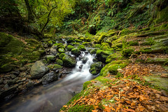 Cascades_3 (John A Hunt Photography) Tags: waterfall sony au australia nsw newsouthwales ebor comara visitnsw