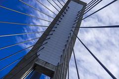 anzac bridge (Greg Rohan) Tags: bridges photography d7200 2016 pyrmont bridgesupport bridge