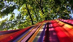 Hamak (maciey24) Tags: hammock hamak drzewo słońce niebo kolorowe kolorowy kolor colorful chill spokój relax linie paski lines stripes sun sky