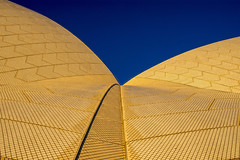 sydney opera house tiles (Greg Rohan) Tags: minimalism abstract pattern art architecture opera operahouse sydneyoperahouse photography sydney outdoor tiles 2016 d7200 texture curve yellow gold blue
