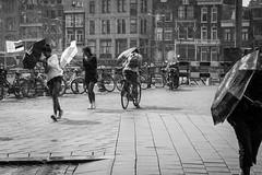DSCF2403.jpg (schreuderm) Tags: netherlands amsterdam names rain storm umbrella