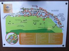 DSC04709 (Ironmonger) Tags: chestnut centre derbyshire