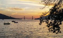 Puente de Rande-PA260017 (peruchojr) Tags: radevigo atardecer puentederande cesantes redondela mar agua puente vigo