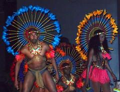 P9244757 (Art & Nice) Tags: brasil tropical olympus xz1 paris plume