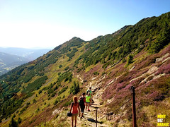 Koz hbety: Dol (FeetNoBorders) Tags: hill mountains koz hbety wide panorama warm big giant czech
