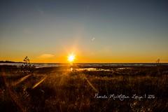 20160828-IMG_7750-WM (Pamela McLellan Zmija) Tags: saugeenshores portelgin sunset beach lakehuron goblesgrove sunshine pamelamclellanzmija