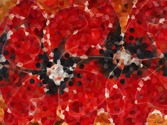 Modern Red Poppies - Sharon Cummings (BuyAbstractArtPaintingsSharonCummings) Tags: red redpoppies poppies poppy flower flowers floral botanicalprints flowerart modernart modernflowers modernpoppies crimson ruby black movement flow flowing ultramodern midcenturymodern petals sharoncummings contemporary modernhome moderndecor moderndecoratingideas abstract abstractflowers prettyflowers uniqueart warmtones earthtones white