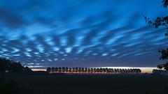 Clouds (Nederland in foto's) Tags: nederlandinfotos nederland netherlands nikon paulvandevelde pdvandevelde padagudaloma biesbosch dordrecht sunrise sky clouds outdoorphotography outdoor natuurfotografie nature naturephotographer landscape landschapsfotografie landschap