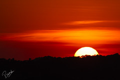 El Sol s'amaga (Ricard Snchez Gadea) Tags: 600 sigma150600mmf563dgoshsmcontemporary sigma150600 7d eos7d canon7d canoneos7d sol sun sunset atardecer postadesol taronja naranja orange canon catalunya canonistas catalua catalonia barcelona bcn puestadesol cielo airelibre