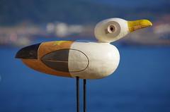 211 - Farolim da Nazar (paspog) Tags: nazar portugal mouette mouettes seagull seagulls