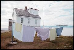 Tranøy_laundry_Nikon F3 (ksadjina) Tags: 24x36 august2016 kodakportra nikonf3 nikonsupercoolscan9000ed norway reisekurt´s60iger silverfast analog film laundry scan tranøy