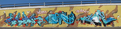 Lion-Bruno-Carl182 (Capras Crew) Tags: bastian capras caprascrew carl 182 carl182 europa graffiti milano original skills true truecaprasneverdie world 2016 lion desert camouflage water oasis bruno rollerpaint explore