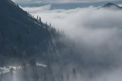 winter mistique (_Maganna) Tags: mountains snow skiing winter trees shadow fog outside outdoors white nikon