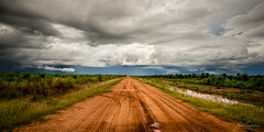Road to the Storm (Nolan Caldwell) Tags: road cloud storm clouds nt australia thunderstorm topend wetseason the4elements thetopend douglasdaly therebeastormabrewin australiathunderstorms