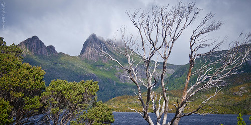 Doing the Dove Lake circuit at Cradle Mountain Nat Park