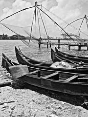 Chinese Fishing Nets, Cochin (Keritheartist1) Tags: sea bw india white black tree monochrome cat boats coast fishing fishermen indian chinese kerala nets southindia keralan chinesestylekeralianfishingboat