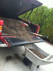 unloading truckload of soil (annekuolukito) Tags: garden tomato diy herbs gardening vegetable dirt growing compost planting composting