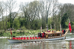 Gloriana on the Thames at Isleworth (cdb41) Tags: tower thames court pull royal row tudor hampton barge isleworth watermen gloriana londonriver