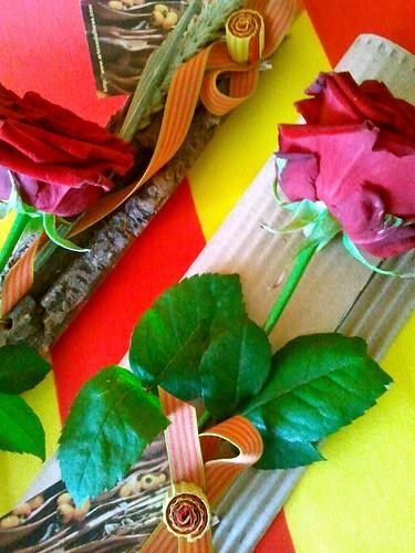 Diada Sant Jordi 2013 - Artesaniaflorae/ Tarragona