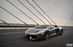 Aventador (Willem Rodenburg) Tags: road netherlands beautiful yellow photoshop grey nikon highway shoot grigio photoshoot shot awesome brakes modified shooting brake lovely sick lamborghini rare supercar tracking willem 1224 grijs supercars v12 d90 cs6 hypercar rodenburg calibers aventador