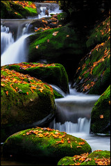 Mossy Falls (photosisee) Tags: longexposure autumn color green fall nature water leaves contrast landscape flow waterfall moss saturated rocks stream scenic vivid foliage boulders mossy roaringfork greatsmokymountainsnationalpark
