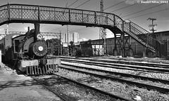 """Maria Fumaça (Daniel Silva Fotografia) Tags: brazil train rail railway pb trem brás """"sãopaulo"""""""