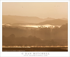 Tomales Bay Hills, Morning (G Dan Mitchell) Tags: california county morning travel trees light usa mist mountain nature birds silhouette fog america forest print landscape bay early haze marin north stock scenic atmosphere hills ridge license inverness tomales recession