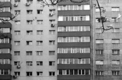 i'm nothing (Francesca Donatelli) Tags: film buildings bucarest