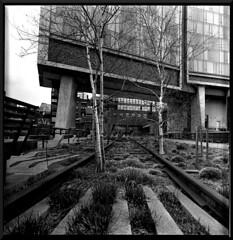 Mamiya C3 High Line NYC (Miles Davis (Smiley)) Tags: new york city nyc white black 120 mamiya tlr film square lens reflex high district twin line roll medium format hi sq ilford highline meatpacking c3 bsquare hiline