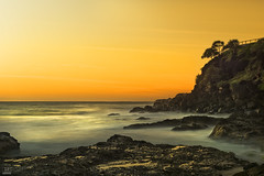 Serenity (banphotography) Tags: ocean longexposure trees sea sunrise rocks daybreak coolangatta goldcoast pandanus snapperrocks pointdanger
