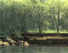 Favorite Spot on the River_Handtinted 1978 (jannetie) Tags: railroad trees windows blackandwhite ice beach water sailboat creek train docks photoshop river reeds painting boats island pier canal newjersey woods rocks doors furniture traintracks nj sandbar trains canoe boulders shore canoes pilings sailor sailboats acrylics mercercounty canoeclub delawareriver yachtclub shipbuilding boater boatclub ferrylanding delawareraritancanal canoer vintagephotographs vintagephotograph crosswickscreek bordentown burlingtoncounty trentonnj duckisland handtintedphoto bordentownnj fieldsboro yapewi yapewiaquaticclub shipwreckparty fieldsboronj