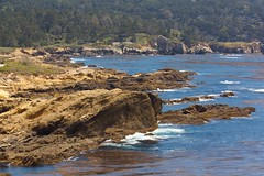 Point Lobos (dianejp) Tags: ocean california park nature water spring trails pointlobos