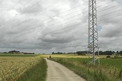 DSC_2710 (Frie Van Grunderbeeck) Tags: belgium belgi vlaamsbrabant hageland outdoor landschap landscape kerkom boutersem wolk cloud pyloon elektriciteit electricity veld field graan mais bike bicycle fiets fietser