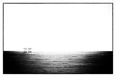 Little bridge (megorgar) Tags: brcke bridge small klein meadow wiese black white schwarz weis bw sw nikcollection silverefexpro2 nikon d700 nikkor 105mm micro minimal minimalistisch frame rahmen typography typografie text