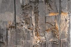 Ldierte Holztr; Bergenhusen, Stapelholm (Chironius) Tags: stapelholm bergenhusen schleswigholstein deutschland germany allemagne alemania germania    ogie pomie szlezwigholsztyn niemcy pomienie holz wood legno madera bois hout